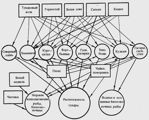 Схема цепей питания и потоков